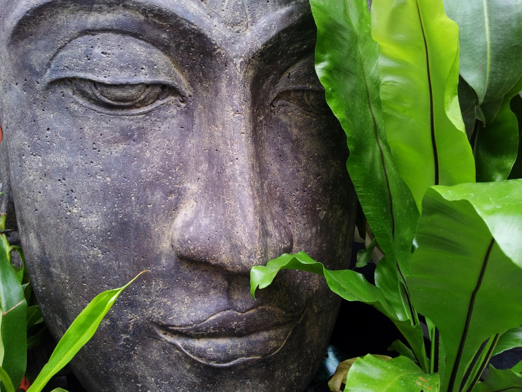 Buddha head statue in nature