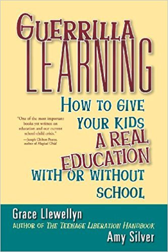Guerrilla Learning book front cover