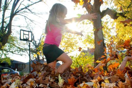 Autumn kids play freely in leaves